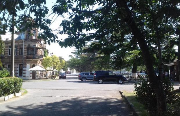 фото Диоскурия (Dioskuriya) изображение №46