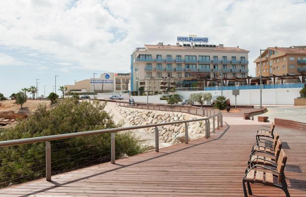 фотографии отеля Hotel Flamingo изображение №23