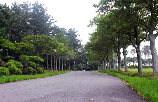 фото отеля Kal Seogwipo изображение №41