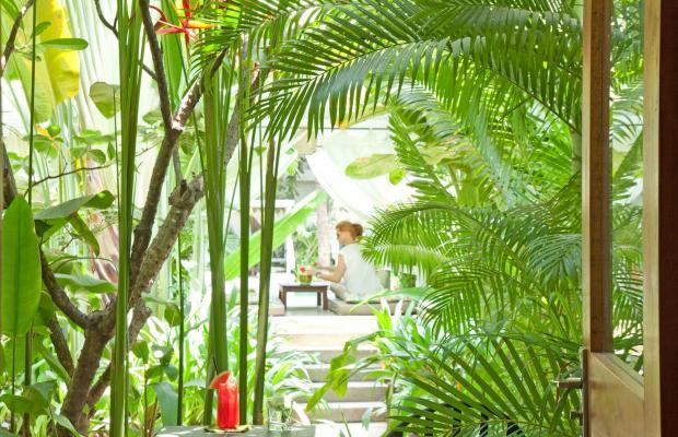 фотографии Plantation - Urban Resort & Spa  изображение №16