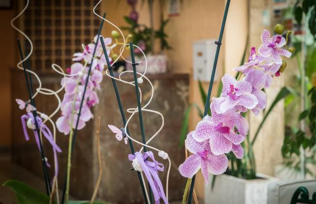фотографии отеля Felipe II изображение №7