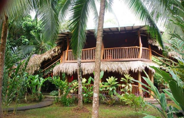 фото отеля Cariblue Beach and Jungle Resort изображение №81