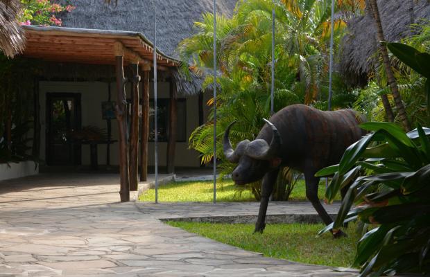 фото отеля Coral Key Beach Resort изображение №13