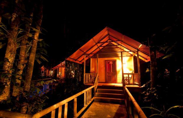фотографии отеля Evergreen lodge изображение №47
