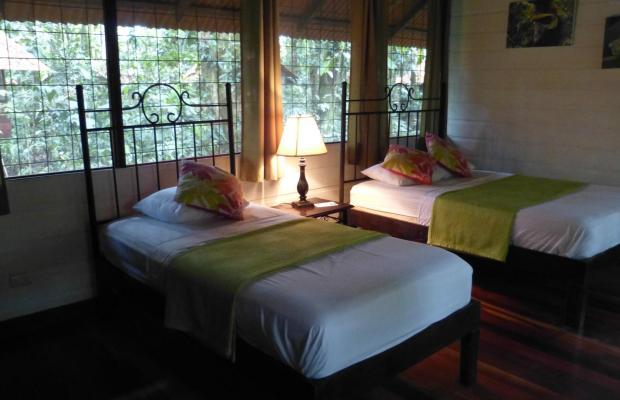 фото Evergreen lodge изображение №18