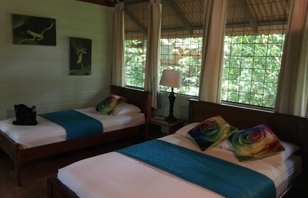 фотографии отеля Evergreen lodge изображение №7