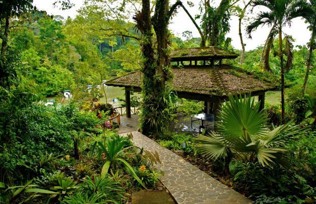 фото отеля Aguila de Osa Inn изображение №49