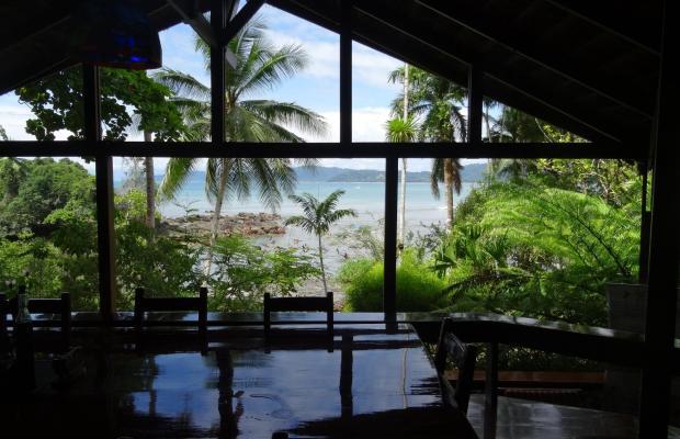 фотографии отеля Aguila de Osa Inn изображение №31