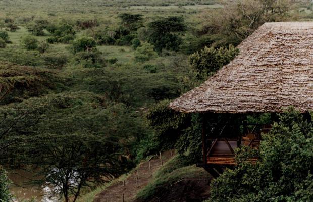 фотографии Mara Simba Lodge изображение №8