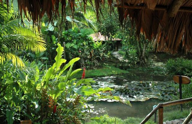 фото отеля Esquinas Rainforest Lodge изображение №21