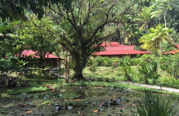 фотографии отеля Esquinas Rainforest Lodge изображение №15