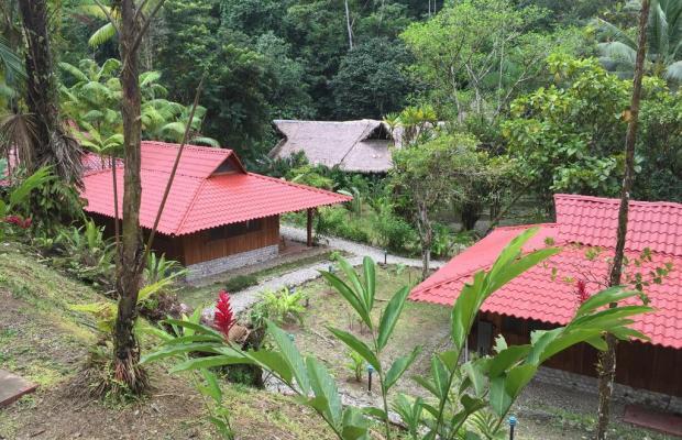 фотографии отеля Esquinas Rainforest Lodge изображение №7