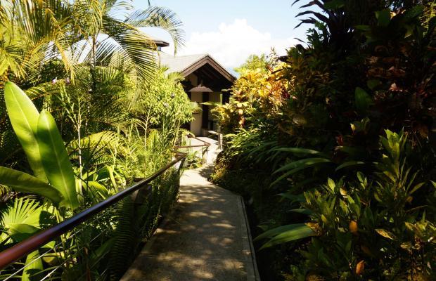 фотографии Buena Vista Luxury Villas изображение №84