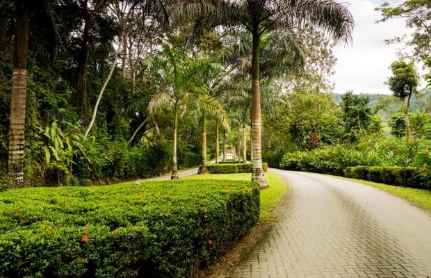 фото отеля Punta Leona изображение №29