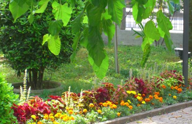 фотографии New Tiffany's Park изображение №40