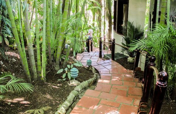 фото Villas Lirio (ex. Best Western Hotel Villas Lirio) изображение №30