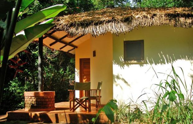 фотографии Moivaro Coffee Lodge изображение №4