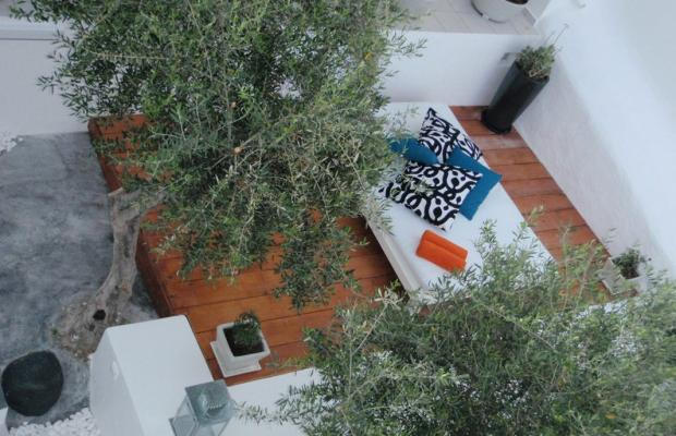 фото Aiora House изображение №2