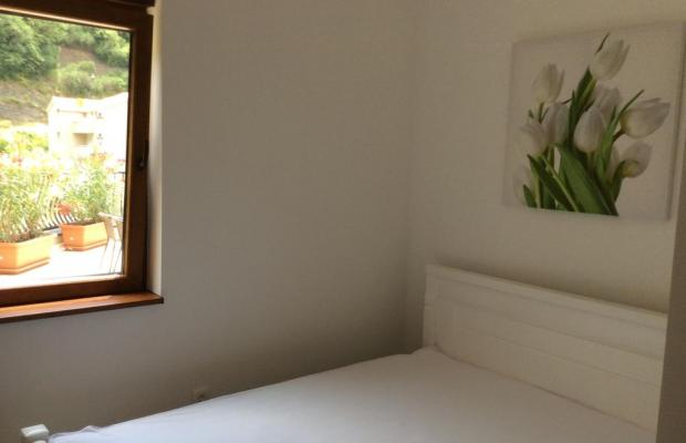 фотографии Olive Terrace изображение №12