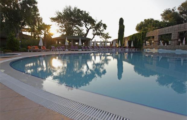 фото отеля Armas Gul Beach (ex. Otium Gul Beach Resort; Palmariva Club Gul Beach; Grand Gul Beach) изображение №5