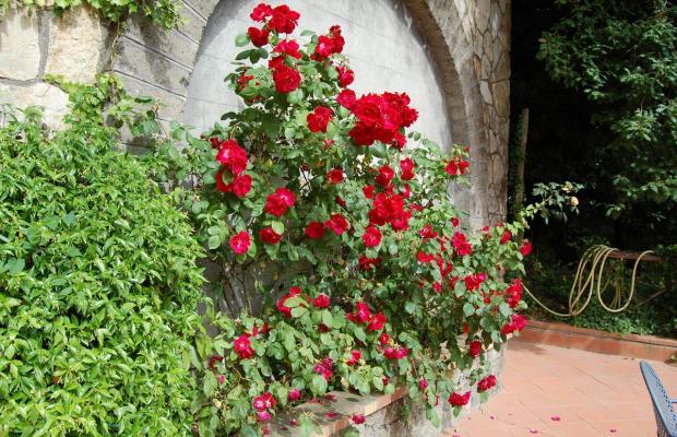 фото Villa Romita изображение №34