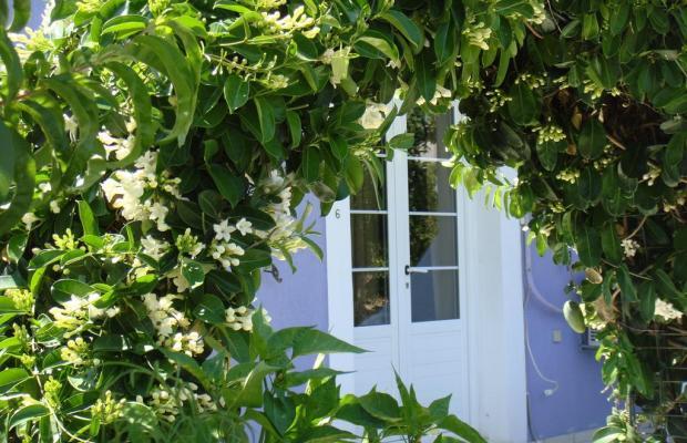 фото Villa Eliza изображение №18