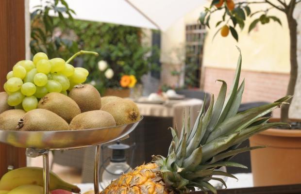 фотографии отеля Hotel Le Isole изображение №23