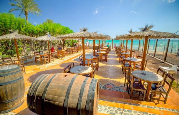 фотографии SBH Fuerteventura Playa изображение №16