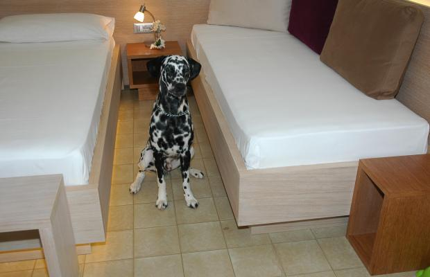 фотографии отеля Hotel Adria изображение №31