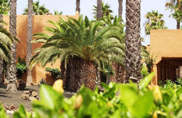 фотографии отеля Oasis Dunas изображение №15