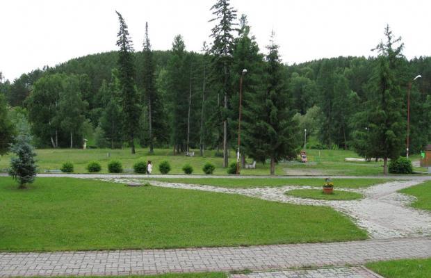 фото Алтайский замок (Altajskij zamok) изображение №6