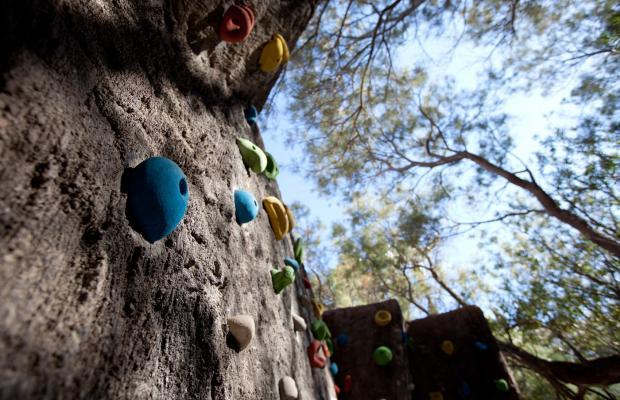 фотографии Playa Senator Playasol Spa Hotel изображение №36