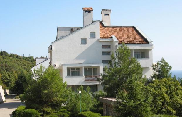 фото отеля Понизовка (Ponizovka) изображение №5