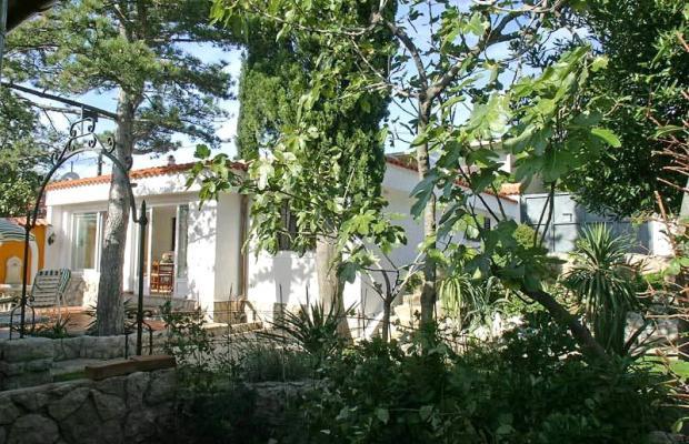 фотографии Villa Dora изображение №12