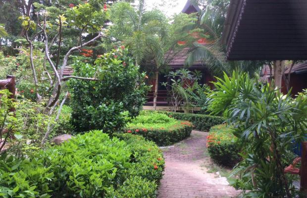 фотографии отеля Paradise Pearl Bungalow изображение №31