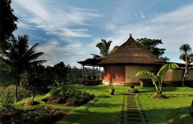 фотографии отеля Bagus Jati изображение №3