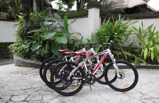 фотографии отеля Villa Tamu Seseh изображение №23