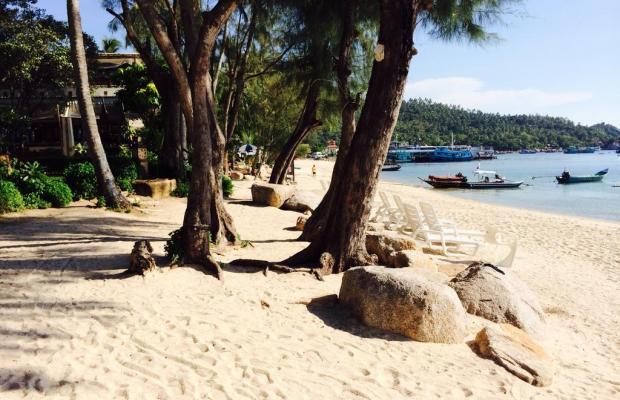 фото отеля Koh Tao Montra Resort изображение №13