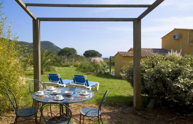 фотографии отеля Palmiers de Palombaggia изображение №19