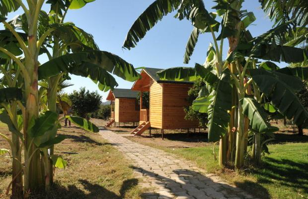 фотографии Botanik Resort Hotel изображение №28