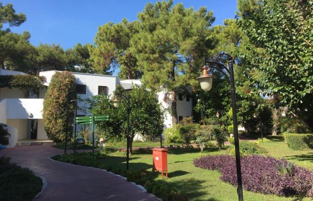 фотографии отеля Simena Sun Club (ex. Simena Resort) изображение №7