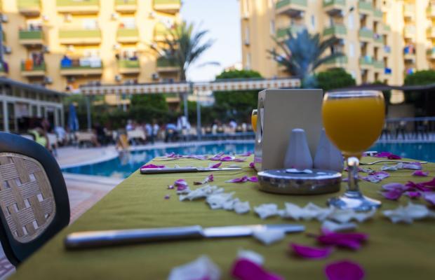 фотографии Feria Kleopatra Royal Palm изображение №28