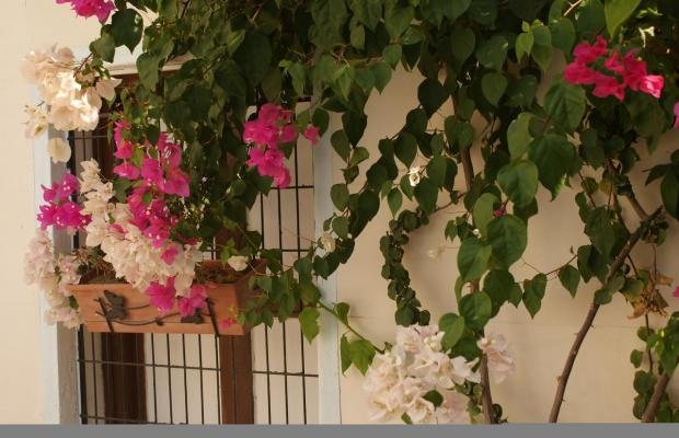 фото отеля Hakan Hotel изображение №33