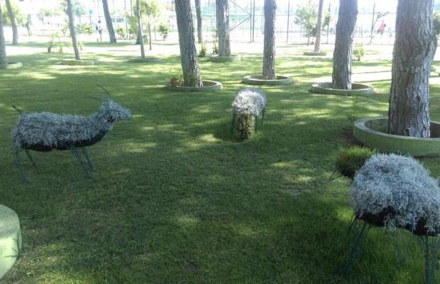 фотографии Sentido Zeynep Resort (ex. Zeynep Resort, Sun Zeynep) изображение №16