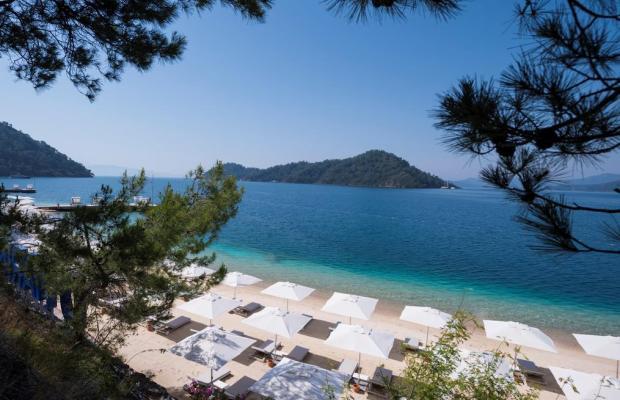 фотографии отеля D-Resort Gocek (ex. Swissotel Gocek Marina Resort) изображение №7