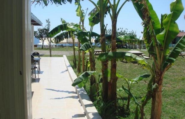 фотографии отеля Club Enjoy Beach изображение №7