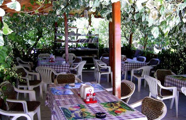 фото Hotel Ipsos изображение №10
