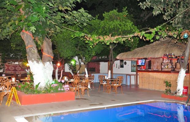 фото Kaliptus Hotel  изображение №14