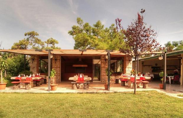 фото отеля Zena Resort (ex. Riva Zena) изображение №65