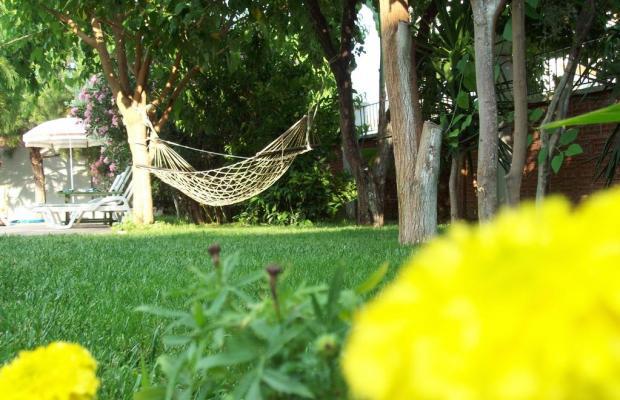 фото отеля Hotel Vanilla изображение №25